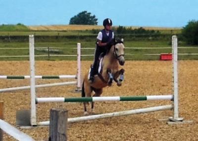 Chevaux&poneys10