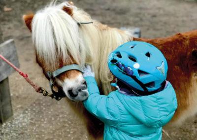 Chevaux&poneys4